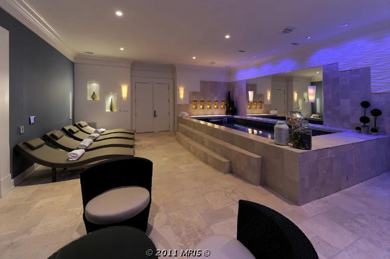 20 000 square foot palatial mansion in ellicott city md for Endless pool in basement