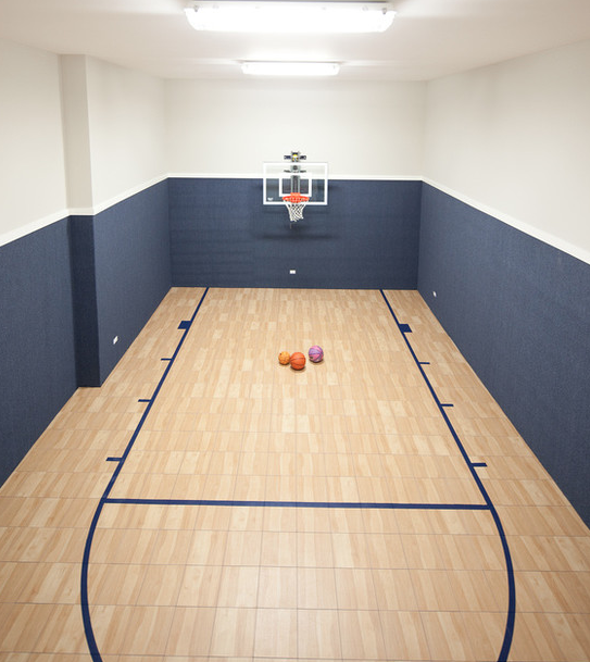 A look at some private indoor basketball courts from houzz for Custom indoor basketball court