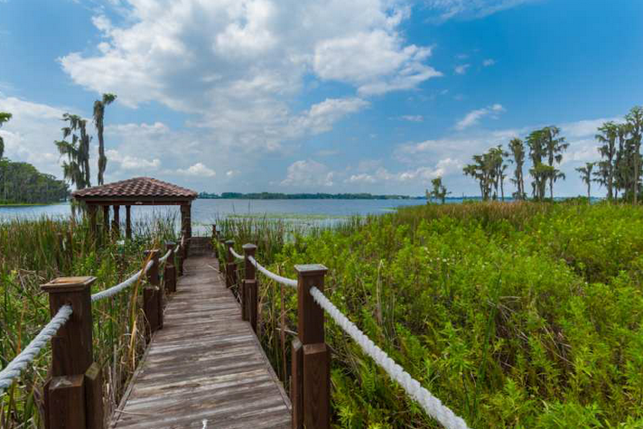 18,000 Square Foot Lakefront Mansion Up For Auction In Windermere, FL
