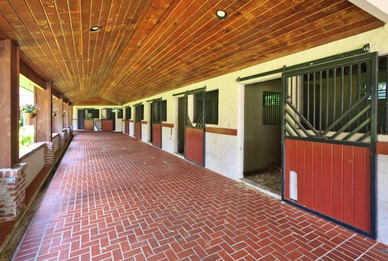 $8.395 Million French Country Equestrian Estate In Orlando, FL