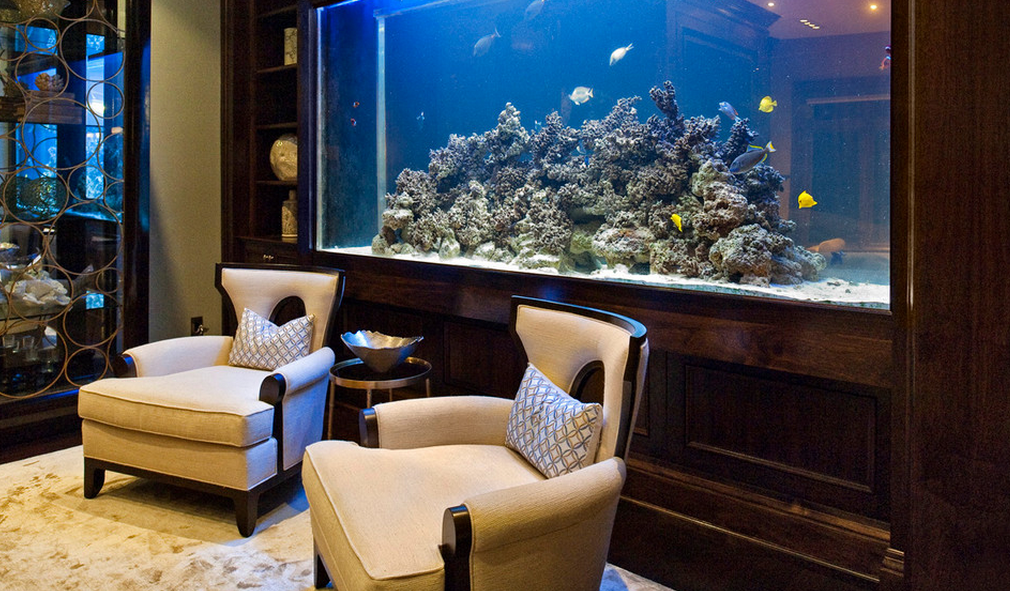 A Look At Some Aquariums From Houzz.com