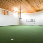 Indoor Sports Court/Putting Green