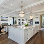 Gourmet Kitchen & Lilving Room