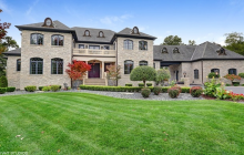12,000 Square Foot Stone Mansion In Homer Glen, IL