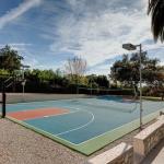 Tennis/Basketball Court